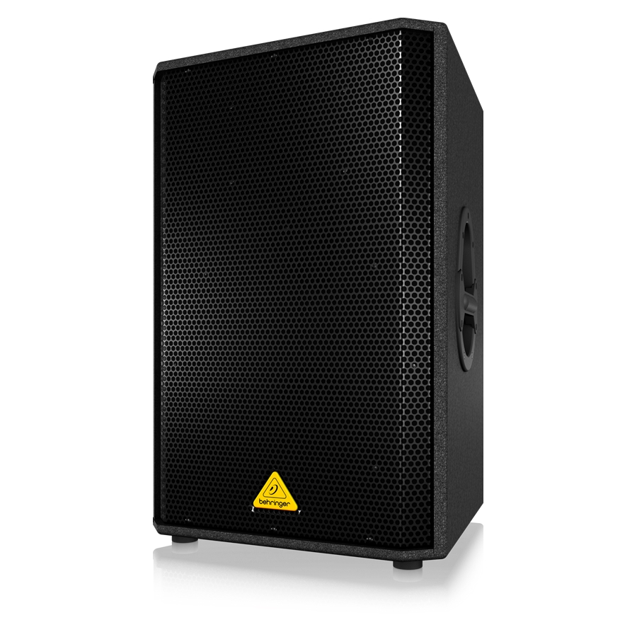 Professional 1000-Watt PA Speaker with 15