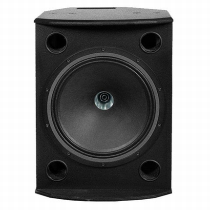TANNOY | VX 12